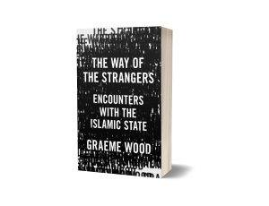 The Way of the Strangers 3D book cover