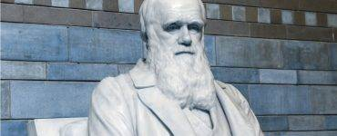Charles Darwin - blue tinted background