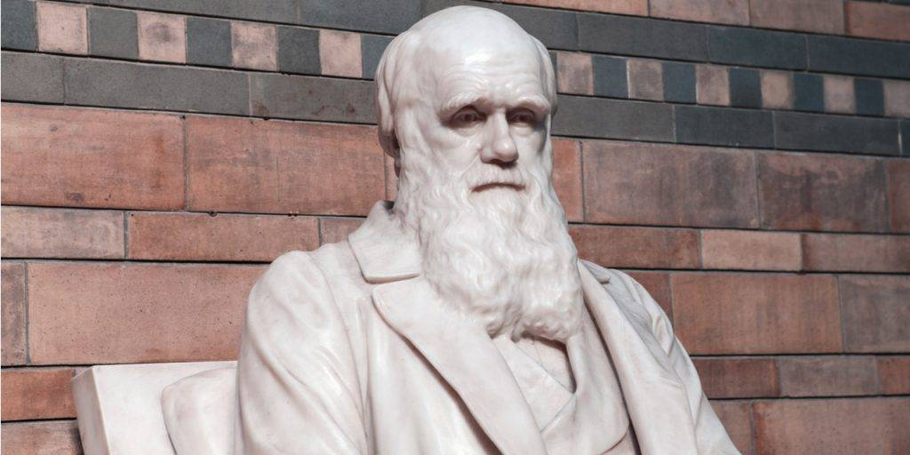 Charles Darwin (red tinted background)