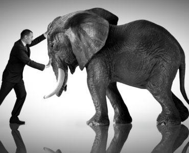 Businessman vs Republican Party elephant